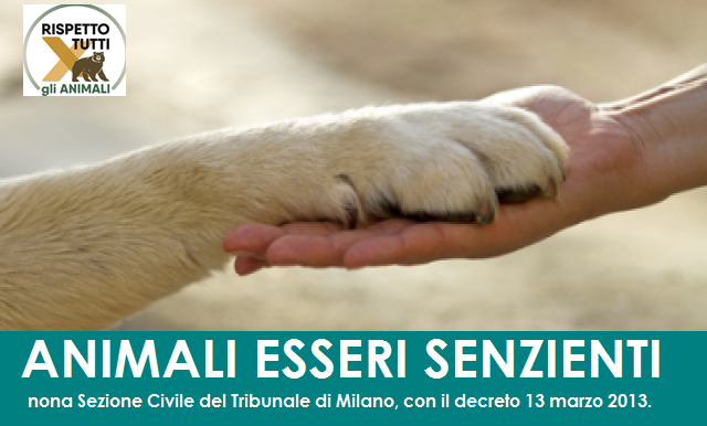 ANIMALI ESSERI SENZIENTI