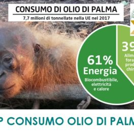 STOP ALL'USO DELL'OLIO DI PALMA