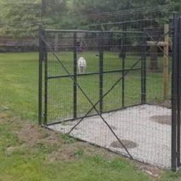 Istituzione di ulteriori aree sgambamento cani Vasto